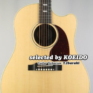 GIBSON J-45 Rosewood M ANT (selected by KOEIDO)