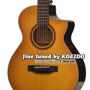 アコースティックギター Headway HC-630TRV(レビュー特典付き)