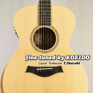 その安定した高品質さで人気のテイラー ギターから新シリーズが登場!マスター ビルダー、アンディ・パワ...