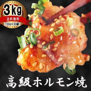 ホルモン 焼肉 ホルモン焼き3kg(100gずつ小分け) お取り寄せグルメ ギフト BBQ シマチョウ 中トロホルモン メガ盛り|kofukutei