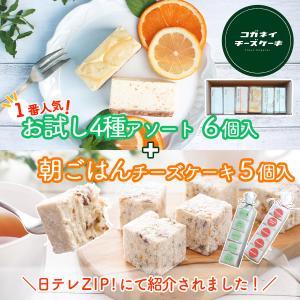 白砂糖不使用チーズケーキ 食べ比べ4種アソートBOX 秋...