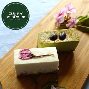チーズケーキ サクラハニー&黒抹茶 6個入りアソート...