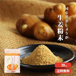 黄金しょうが粉末 20g 高知県産 ゆうパケット送料無料 ジンジャー パウダー 蒸ししょうが 乾燥生...
