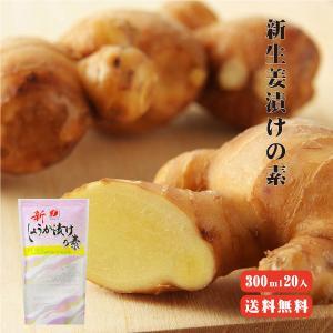 新しょうが漬けの素 300ml ×20 送料無料 季節の野菜も漬けられる|koganenosato
