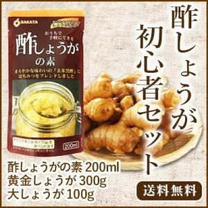 酢しょうがお試しセット 送料無料 酢しょうがの素 黄金生姜300g 大生姜100g 高知県産 しょうが 坂田信夫商店|koganenosato