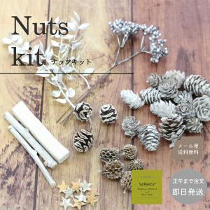 ナッツキット 花材 フラワーキット ハーバリウム メール便送料無料 NK-W|koh5533