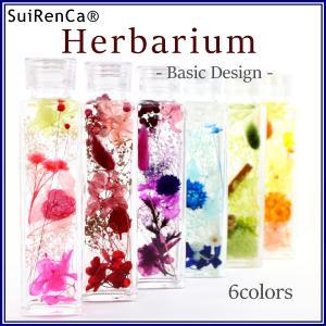 ハーバリウム ベーシックカラー 6種 インテリア ギフト SRCB-150-6C スイレンカベーシック|koh5533