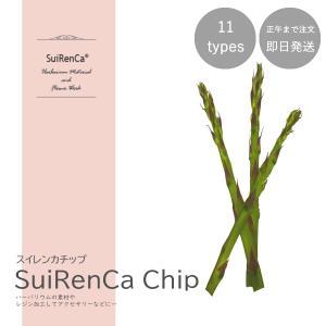フルーツチップ 押し野菜 ドライ パーツ 素材 ハーバリウム SRCC-AS スイレンカチップ アスパラ|koh5533