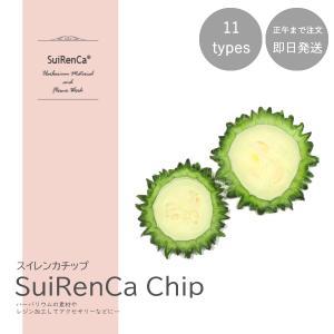 フルーツチップ 押し野菜 ドライ パーツ 素材 ハーバリウム SRCC-BI スイレンカチップ ゴーヤ|koh5533