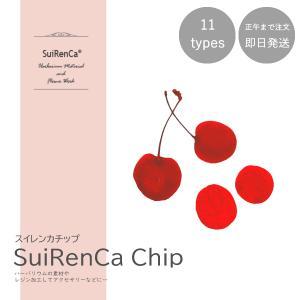 フルーツチップ 押し野菜 ドライ パーツ 素材 ハーバリウム SRCC-CH スイレンカチップ チェリー|koh5533