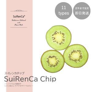 フルーツチップ 押し野菜 ドライ パーツ 素材 ハーバリウム SRCC-KI スイレンカチップ キウイ|koh5533