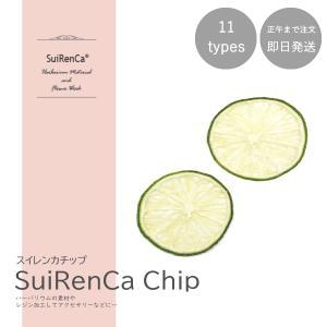 フルーツチップ 押し野菜 ドライ パーツ 素材 ハーバリウム SRCC-LI スイレンカチップ ライムの画像