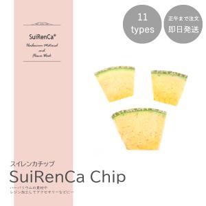 フルーツチップ 押し野菜 ドライ パーツ 素材 ハーバリウム SRCC-ME スイレンカチップ メロン|koh5533