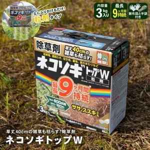 ◆レインボー薬品 ネコソギトップW 3kg