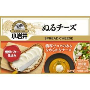小岩井ぬるチーズ 100g×【1ケース12個セット】