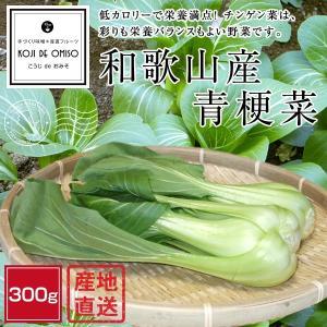 産地直送! 和歌山産 青梗菜(チンゲン菜) 300g|koji-de-omiso