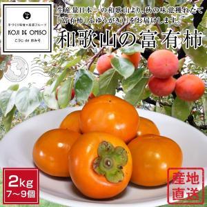 産地直送! 和歌山産 富有柿(ふゆうがき) 約2kg koji-de-omiso