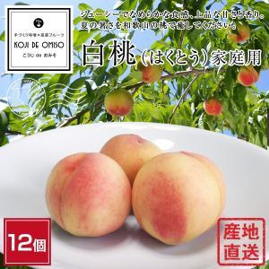 桃の産地から直送! 白桃(はくとう) 10個 家庭用 ※訳ありの桃ではなく、もぎたての桃を通常のダンボール箱で発送します。|koji-de-omiso