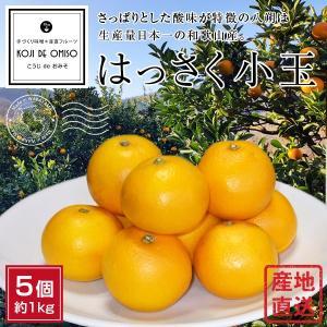 和歌山より産地直送! はっさく小玉 5個 約1kg|koji-de-omiso
