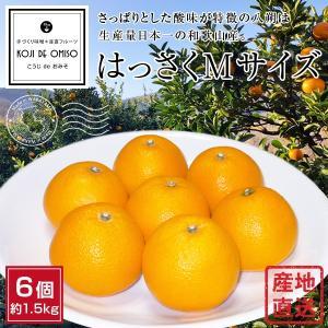 和歌山より産地直送 はっさくMサイズ6個 約1.5kg|koji-de-omiso