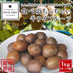 和歌山より産地直送! 食べ頃ちっちゃいキウイフルーツ 1kg|koji-de-omiso