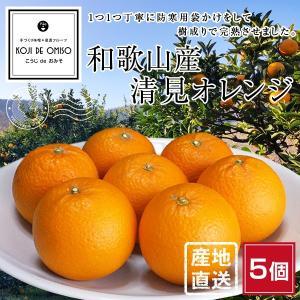 産地直送 樹上完熟 清見(きよみ)オレンジ 5個|koji-de-omiso