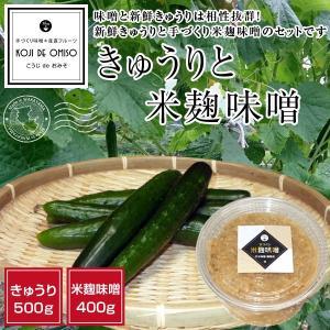 胡瓜と甘口米麹味噌セット 〈チルド便で発送〉|koji-de-omiso