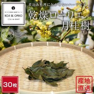 和歌山産 乾燥ローリエ(月桂樹)|koji-de-omiso