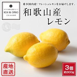 産地直送! 和歌山産 レモン 3個|koji-de-omiso