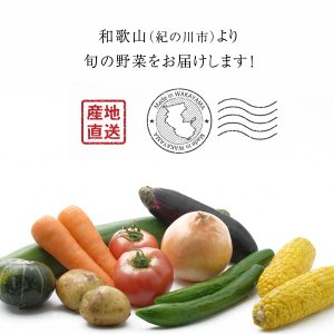 農家より直送!和歌山産 にんにく 3個 約200g|koji-de-omiso|02