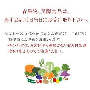 無農薬 和歌山産 朝採りピーマン サイズ混合 200g ※期日指定不可|koji-de-omiso|06