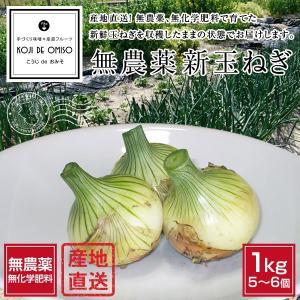和歌山より旬野菜直送!自然農法 新玉ねぎ 1kg超 koji-de-omiso