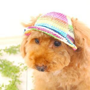 ポイント最大13倍! ガーデンオブエデン 犬の帽子 マルチボーダーハット|koji