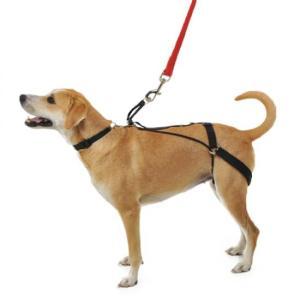 ポイント最大12倍! 犬の引っ張り癖防止ハーネス ホーガンハーネス ミディアム|koji