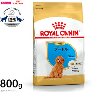 ロイヤルカナン 犬 ドッグフード プードル 子犬用 800g|koji