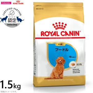 店内ポイント最大32倍!ロイヤルカナン 犬 ドッグフード プードル 子犬用 1.5kg|koji