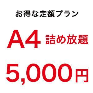 アクリル印刷 詰め放題 定額4000円 A4サイズ 3mm透明アクリル内に詰め放題、切り放題。お好き...