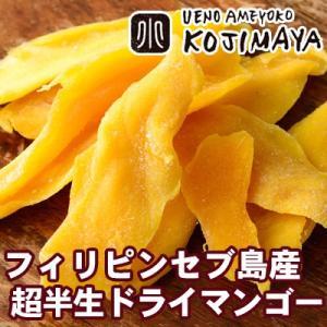 超半生フィリピンマンゴー《210g》  フィリピンのカラバオ種というマンゴーは、 香り高く、食味は極...
