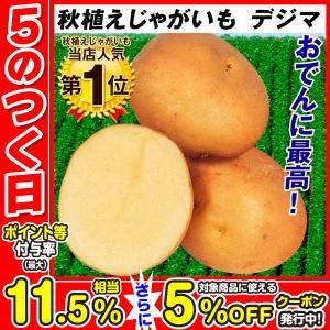 秋植えじゃがいも 種芋 種いも デジマ 1kg / ジャガイモ じゃが芋 馬鈴薯 ばれいしょ 種じゃが