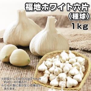 ニンニク 種球 福地ホワイト六片 1kg / にんにく 種ニンニク 大蒜 たね タネ 球根 国産 ガーリック