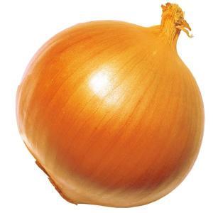 玉ねぎ苗 F1超極早生玉葱 100本 / 国華園|kokkaen