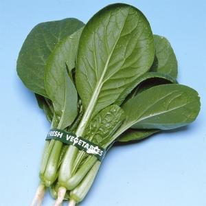 定価の半額!お買得健康野菜たね 商品情報 耐病・耐暑・耐寒性強い! ★栄養豊富な健康野菜。家庭で作れ...