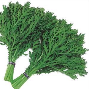 野菜たね 種 菜類 摘み取り中葉春菊 1袋(30ml) / シュンギク 菊菜 キクナ 野菜の種 国華園 kokkaen