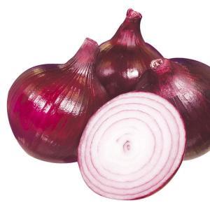 玉ねぎ苗 レッドムーン 100本 / 国華園|kokkaen
