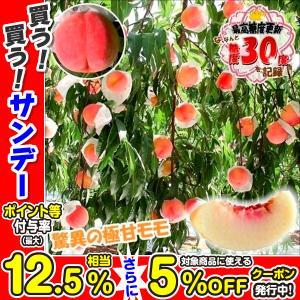 果樹苗 モモ 桃水こまち富士野生桃R 1株...