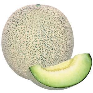野菜たね メロン F1グリーンネットメロン 1袋(1ml) ...