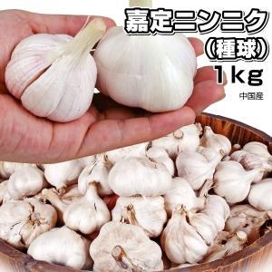 ニンニク 嘉定ニンニク(種球)(中国産) 1kg