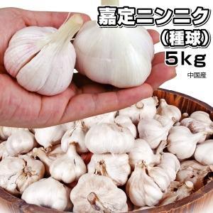 ニンニク種球 嘉定ニンニク(種球 )(中国産) 5kg