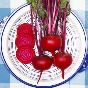 種 野菜たね ビーツ 1袋(10ml入)/タネ たね びーつ kokkaen