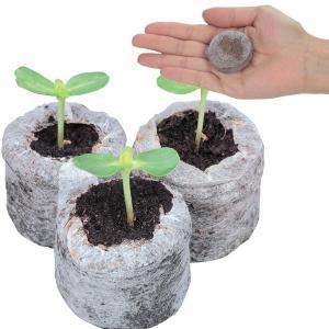 種 野菜たね 種まき資材 ジフィーセブン 10個1組 / 野菜のタネ 野菜 種子 国華園|kokkaen